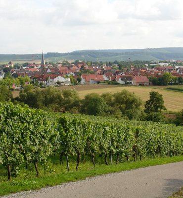 Bildquelle: https://commons.wikimedia.org/wiki/File:Brackenheim.jpg | Fotograf: Martin 2485