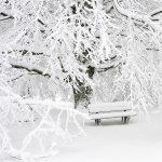 Quelle: https://pixabay.com/en/snow-mount-mountain-panoramic-1711697/ | Fotograf: MONTXODONOSTIA